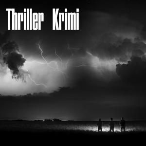 Portfolio Thriller Krimi
